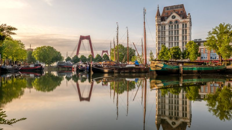 Top 10 Vivid Rotterdam